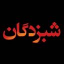 shabzadee